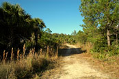 Verdura Properties Big Bend Coastal Acreage